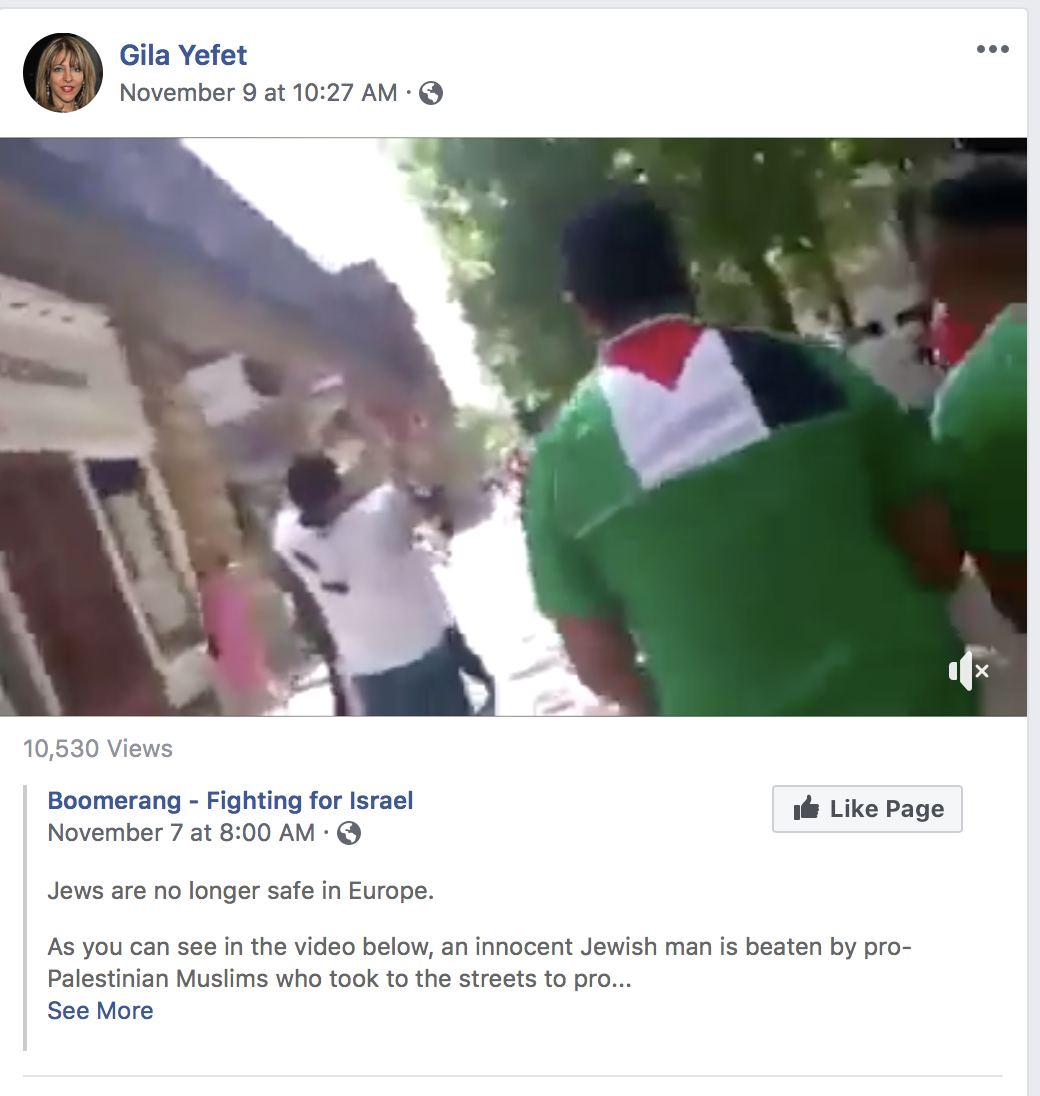Yefet Post of Pal protesters 'beating' Jewish man